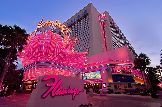 Flamingo Hotel & Casino Las Vegas- Review