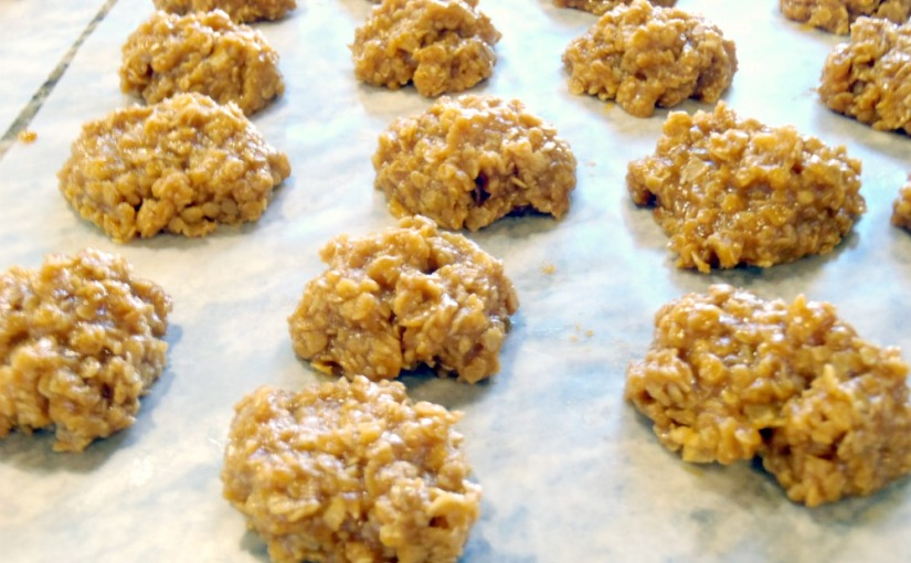 Pumpkin Spice No- Bake Cookies~ Fall Cookie Series